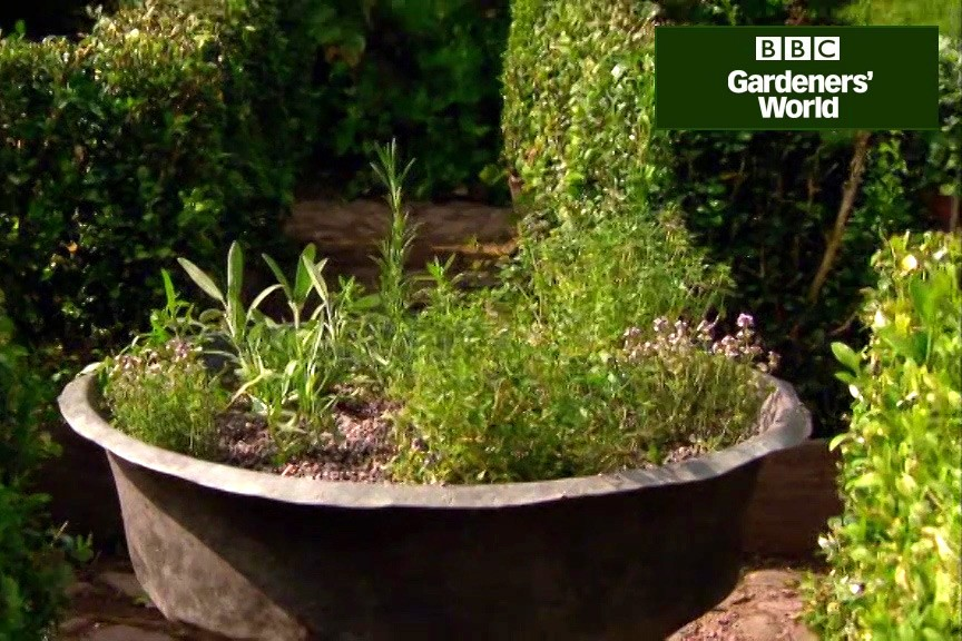 How to plant up a herb container video