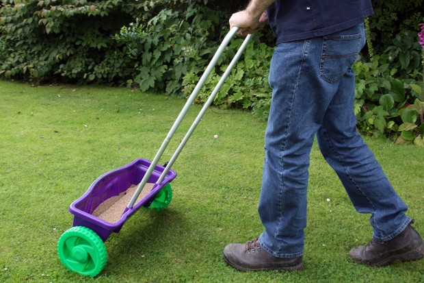applying-lawn-feed-4