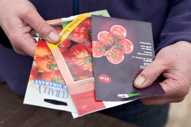 seed-packets-3
