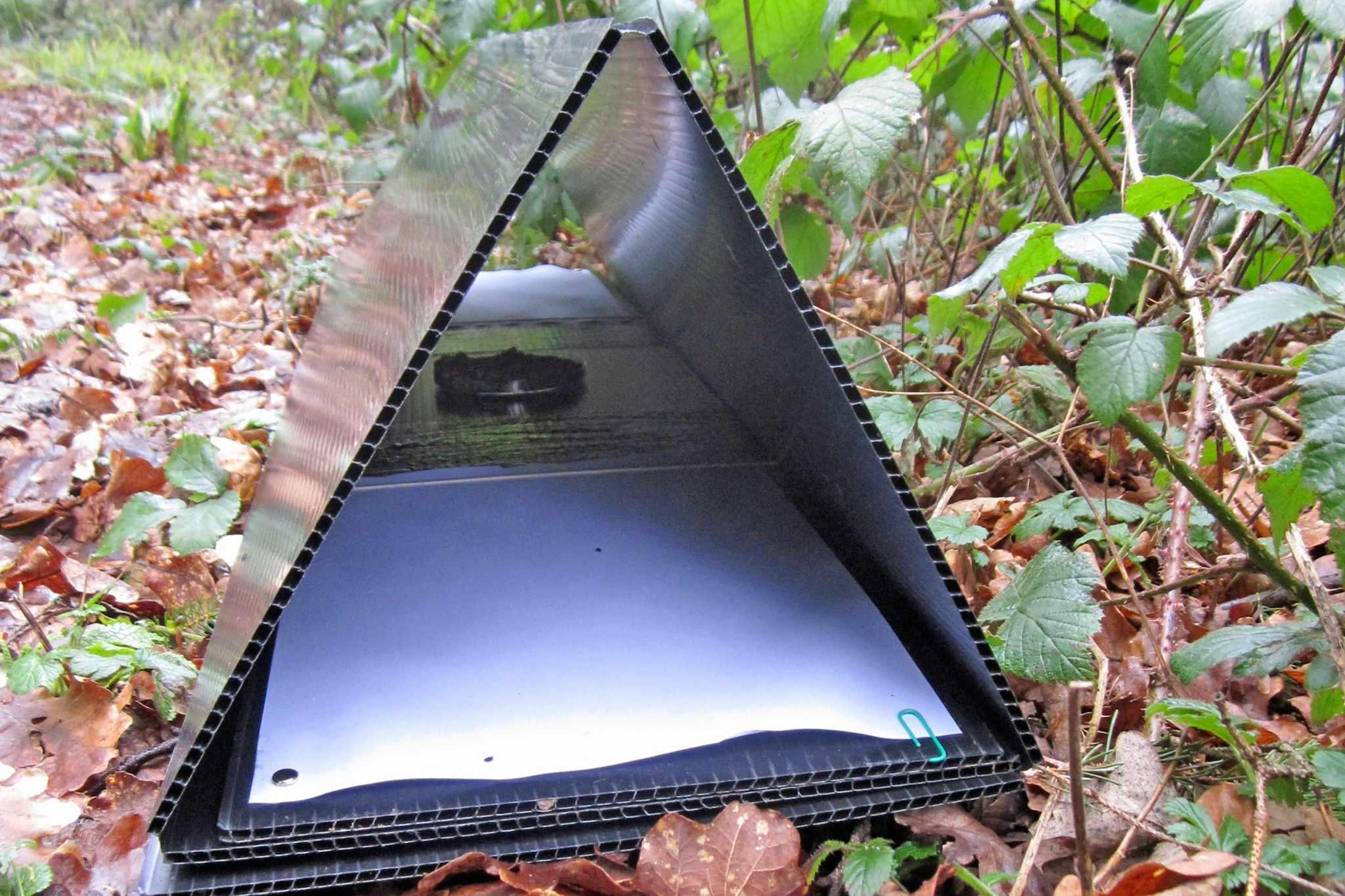 A hedgehog footprint tunnel