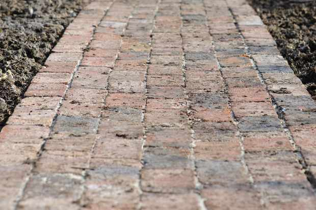 garden path made from bricks