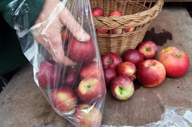 storing-apples-in-a-plastic-bag-3