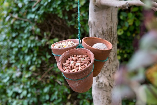 Three terracotta pots of food for birds hung from a tree by string