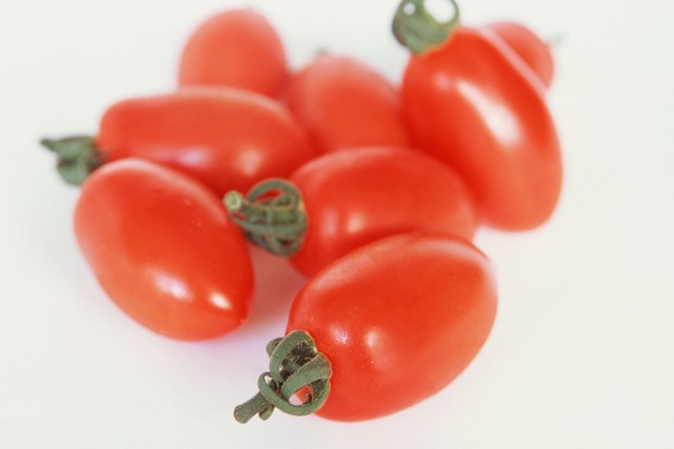 mini-plum-tomato-floridity-2