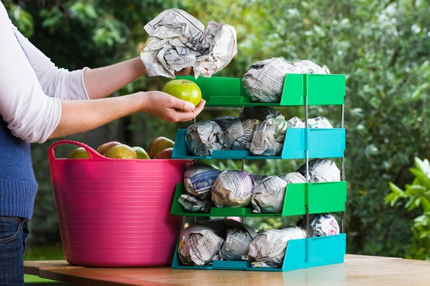 Storing apples wrapped in newspaper, in layers in trays
