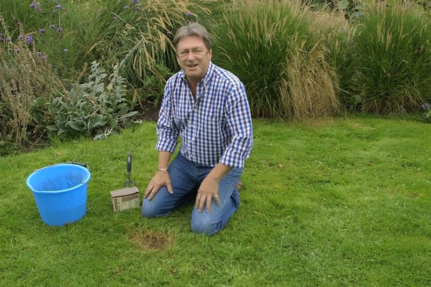 Repairing lawn patches