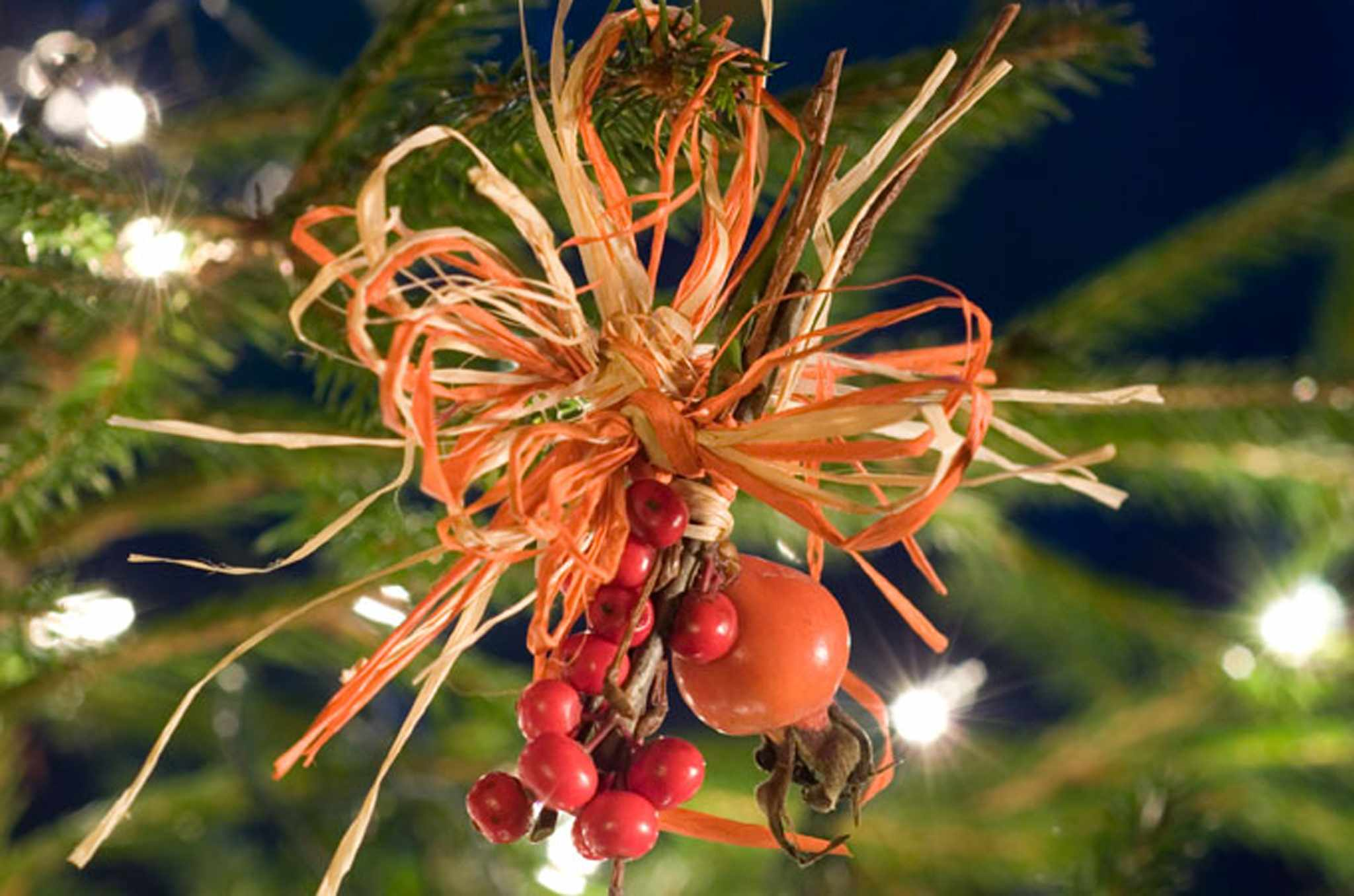 How to make rosehip Christmas decorations