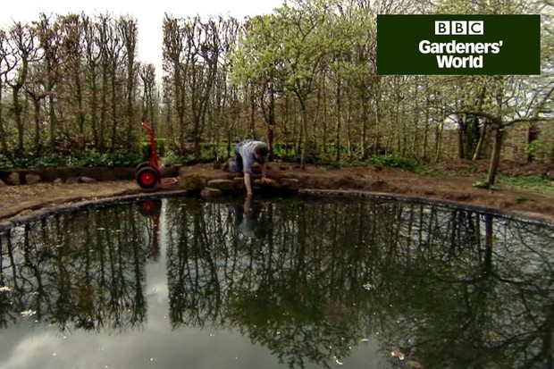 How to edge a pond to hide the liner