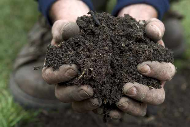 How to make garden compost