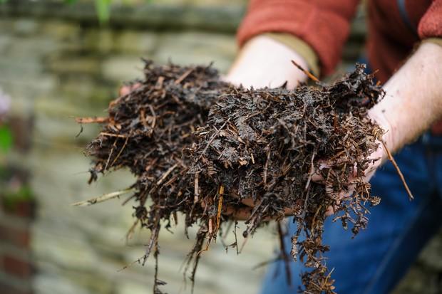 adding-compost-or-manure-2