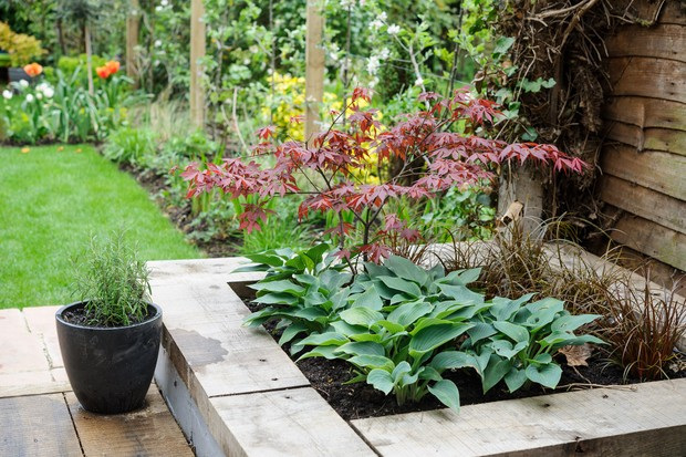 raised-bed-with-shade-lovers-2