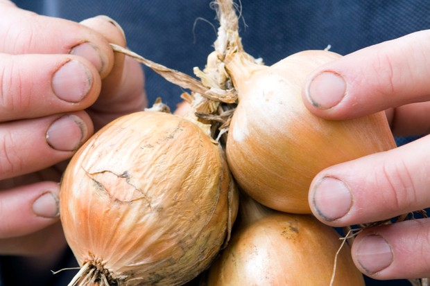 How to store onions - tying in the onions