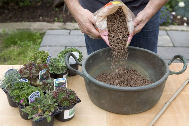 Alpine container - adding horticultural grit