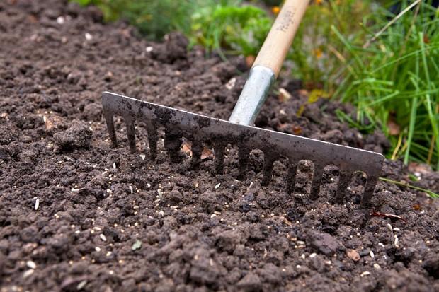 raking-seed-into-soil-2