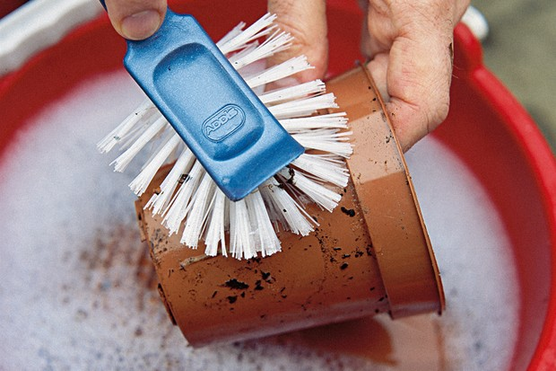 cleaning-a-terracotta-pot-with-soapy-water-and-a-scrubbing-brush-2