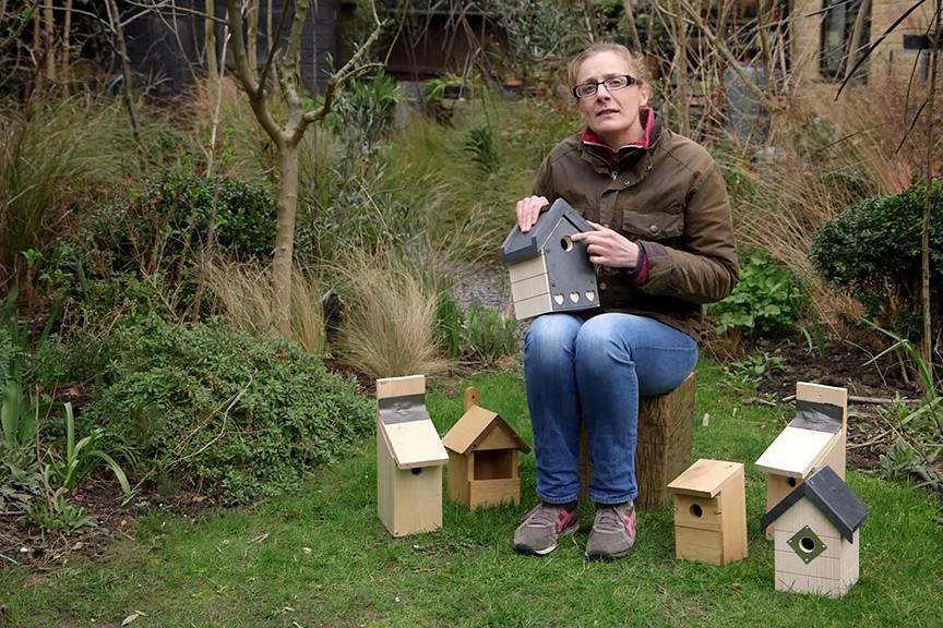 Types of bird box video
