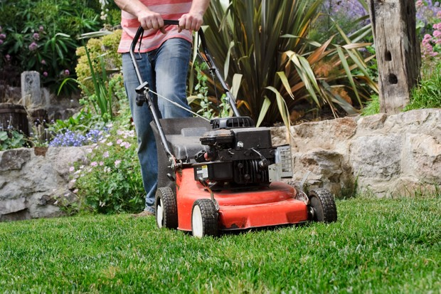 Mowing the lawn with a petrol mower