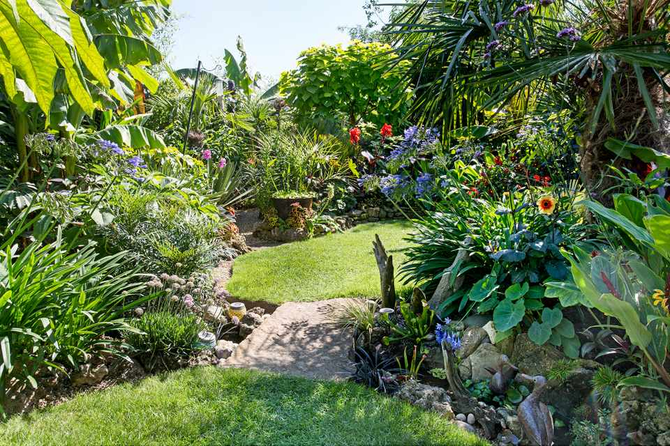 Make The Most Of A Small Garden Bbc Gardeners World Magazine