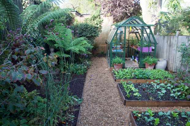 A greenhouse in a small garden