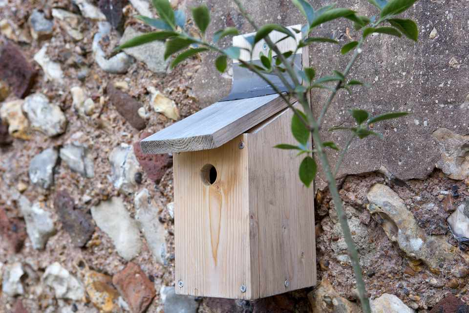 Convert a nest box into a winter roost