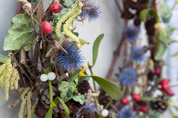 A colourful wreath featuring white mistletoe berries, blue teasels, red berries and pale catkins