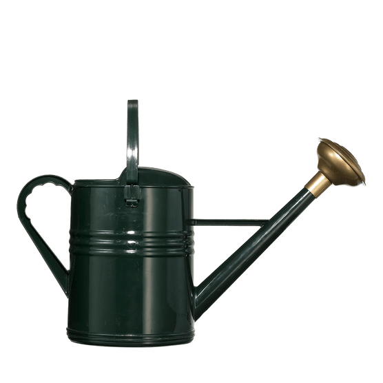 Dark green watering can
