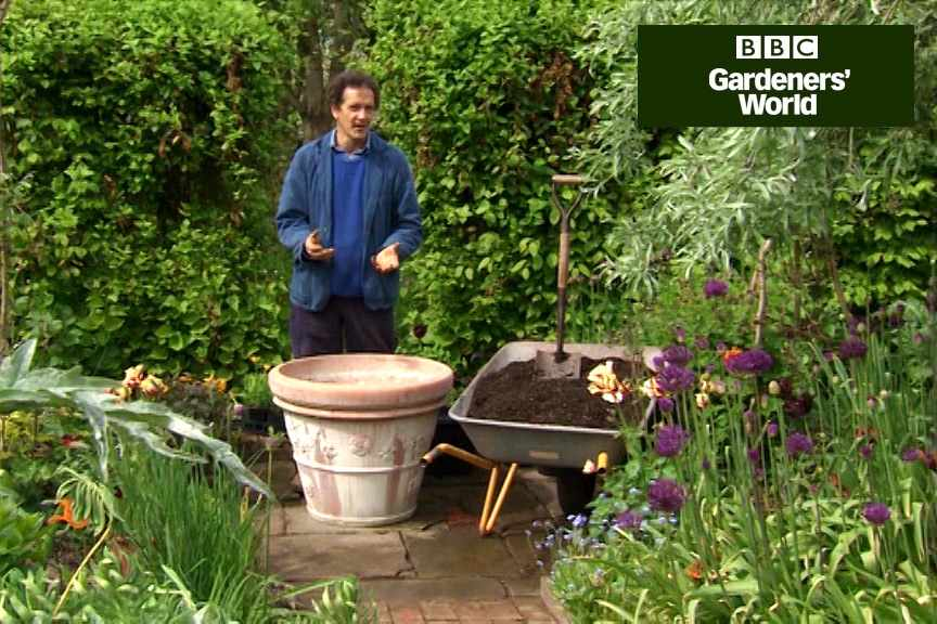 Planting A Large Container Display Gardenersworld Com