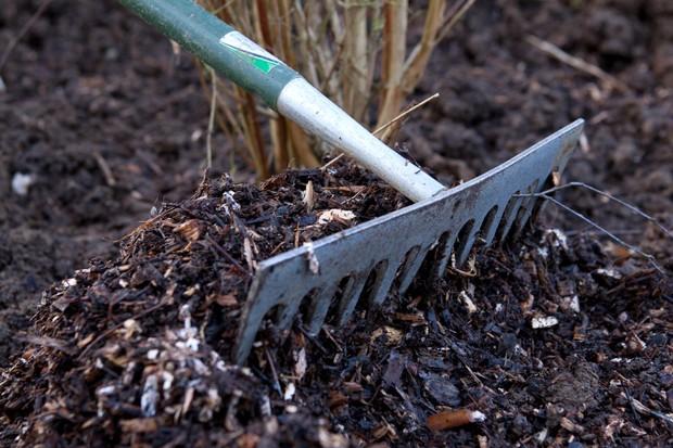 spreading-a-bark-mulch-2