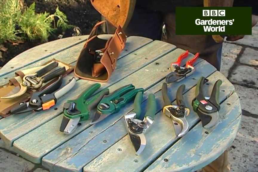 How to choose secateurs