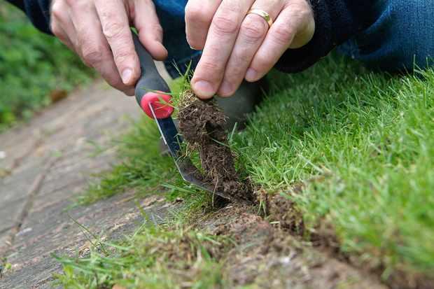 cutting-a-lawn-edge-2