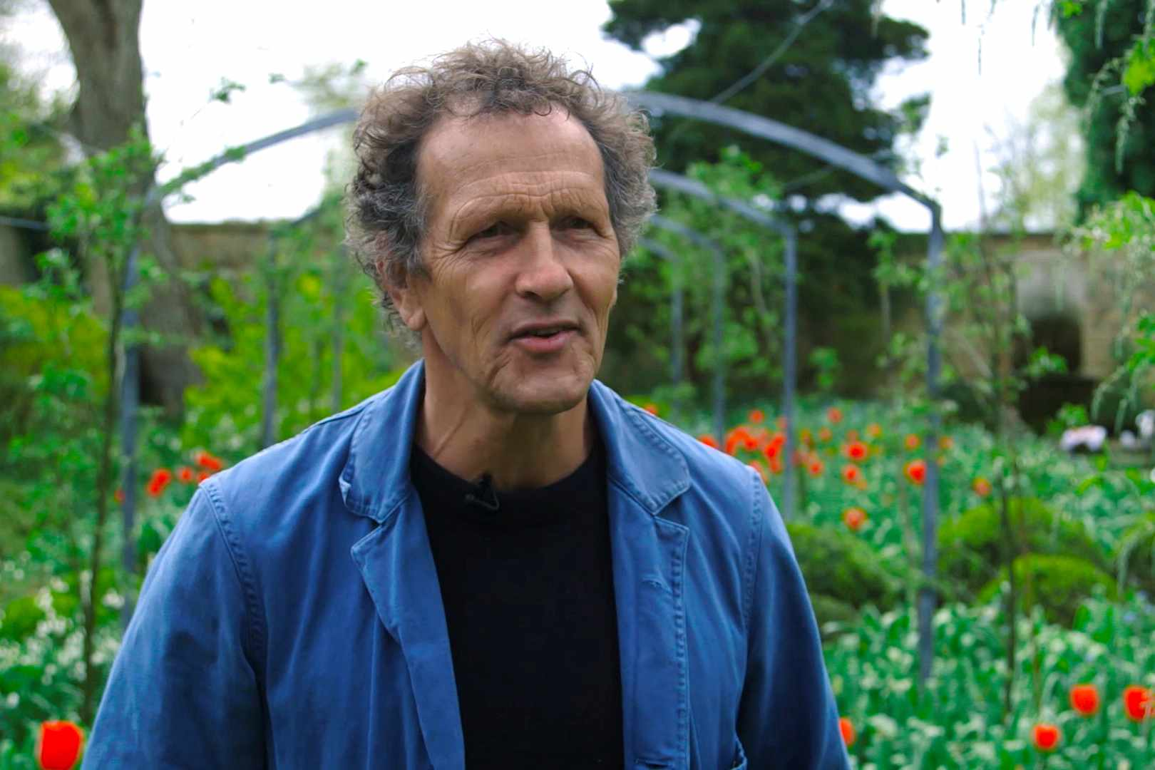 Monty Don discussing his dogs video