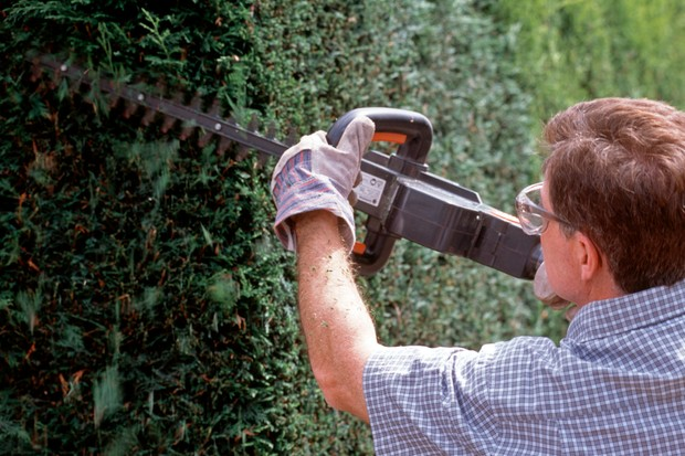 Trimming the side of the hedge