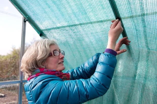 using-internal-shade-netting-2