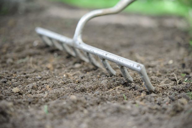 raking-the-soil-for-sowing-meadow-flowers-2
