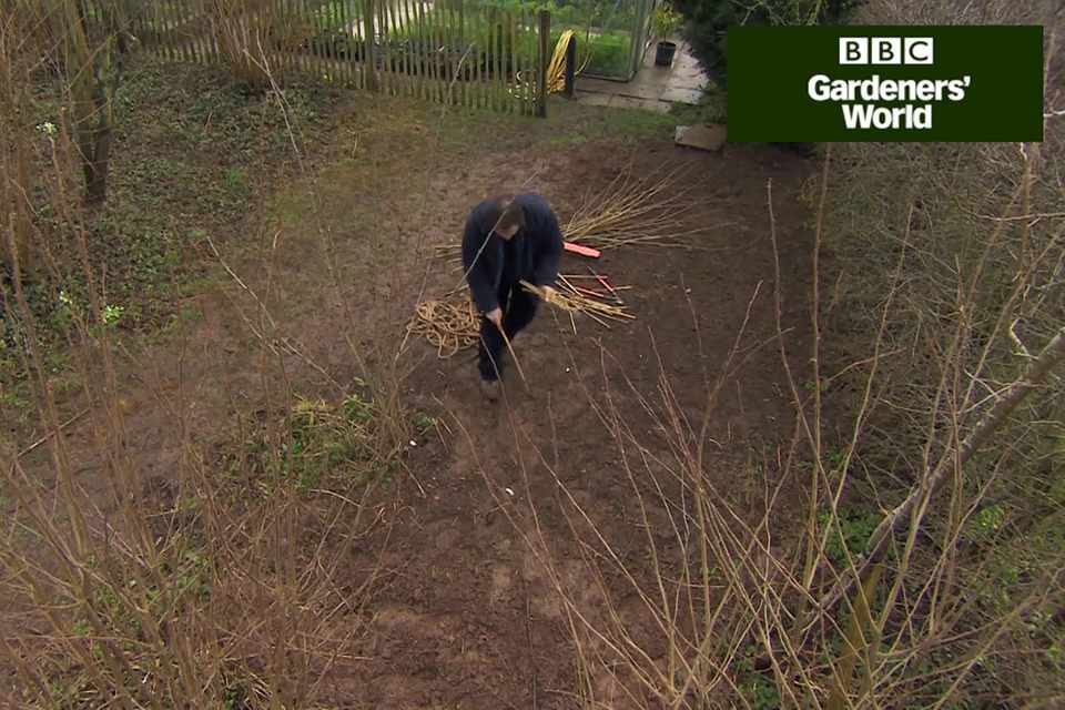 How to create a wildlife garden part two video