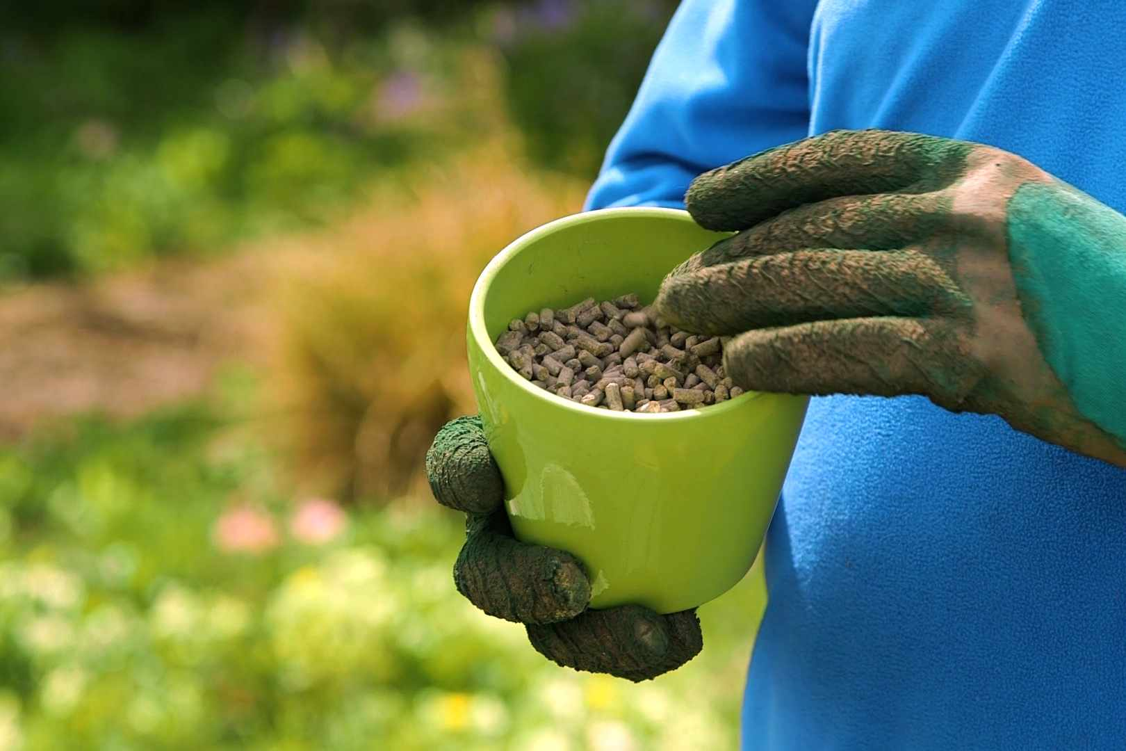 No Fuss Guide Feeding plants in spring