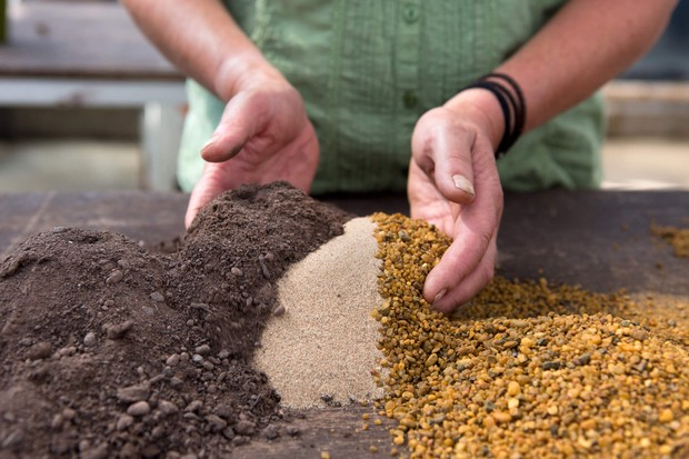 compost-mix-for-alpines-2