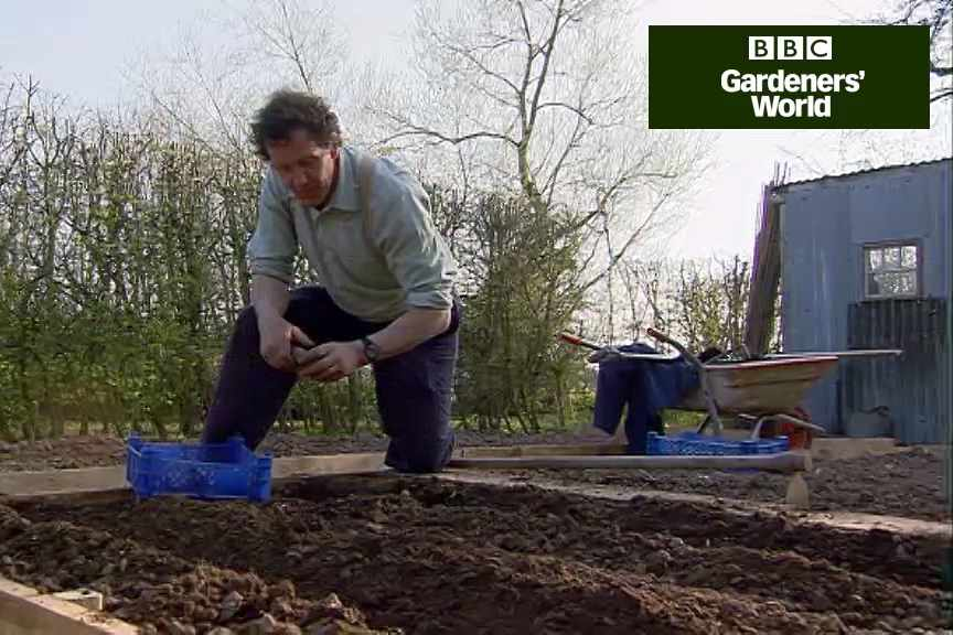 How to plant early potatoes video