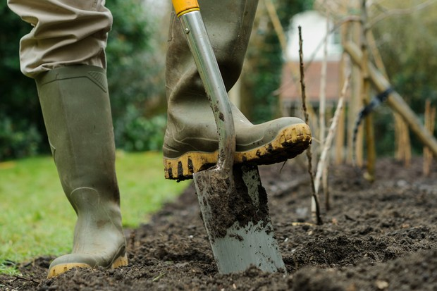 Digging over the soil