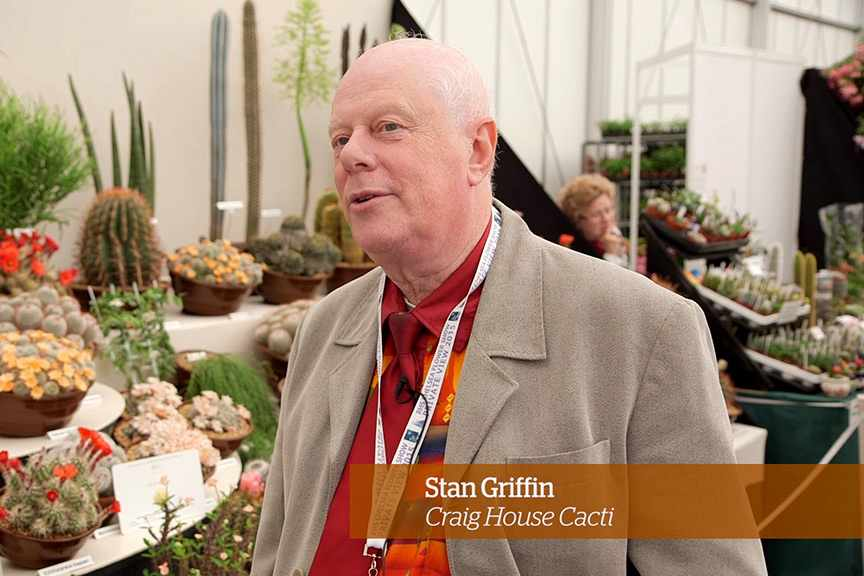 Caring for cacti Golden Rules