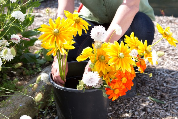 plunging-cut-flowers-into-a-bucket-of-water-2