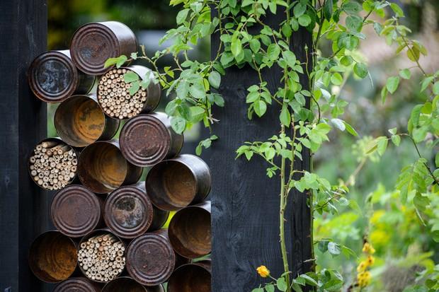 Tin can wildlife habitats
