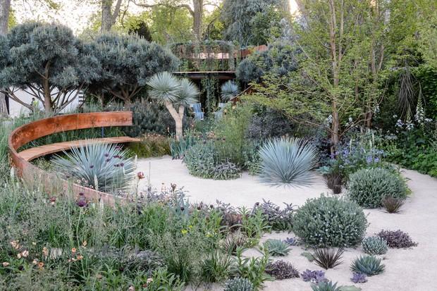 Exotic garden for a sunny spot