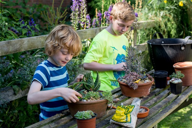 Kids planting up a succulent display