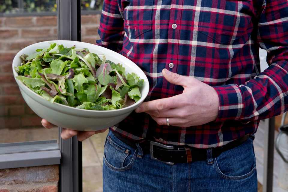A bowl of winter salad leaves