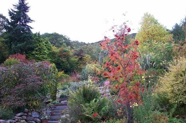 Abriachan Gardens