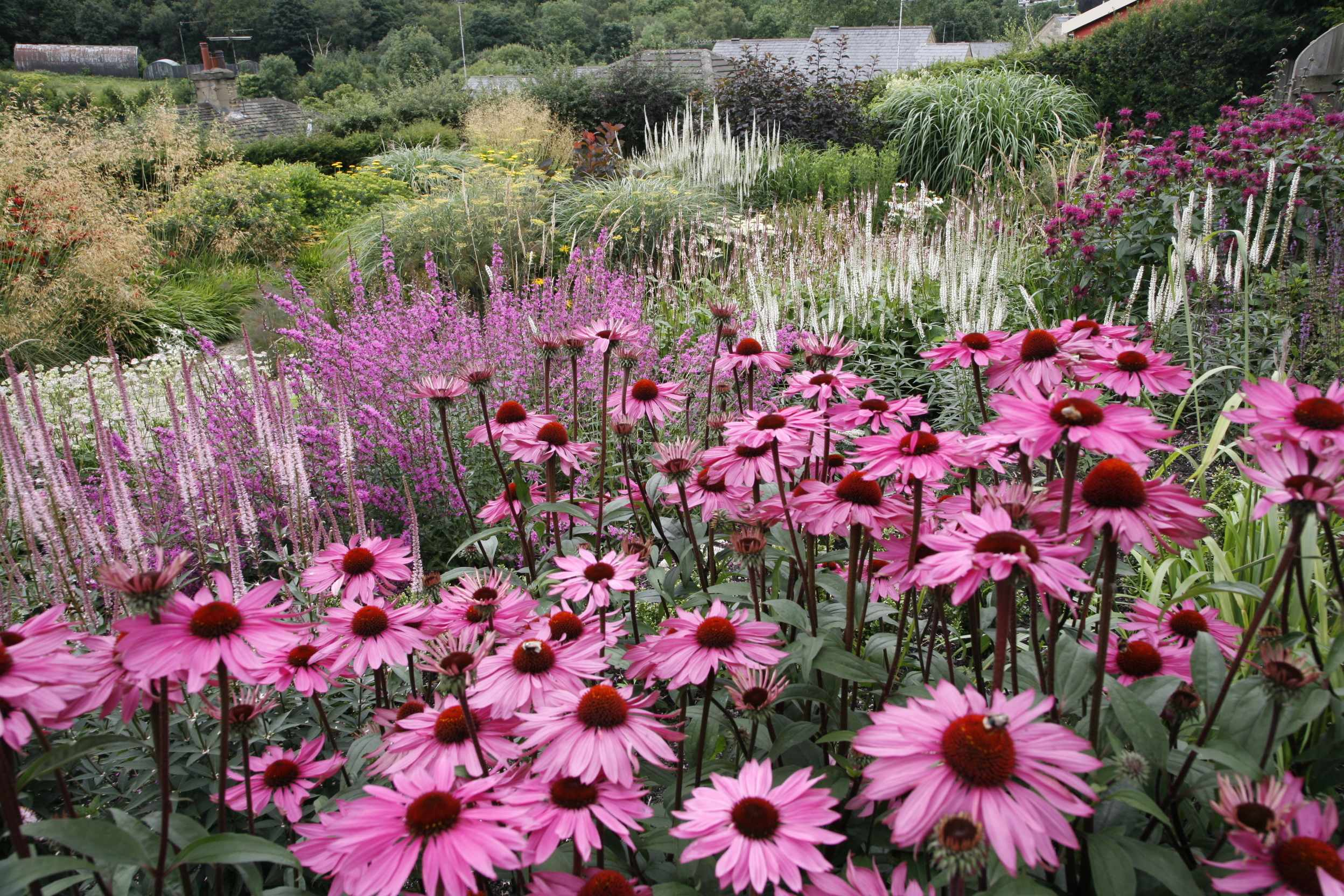 Dove Cottage Nursery & Garden