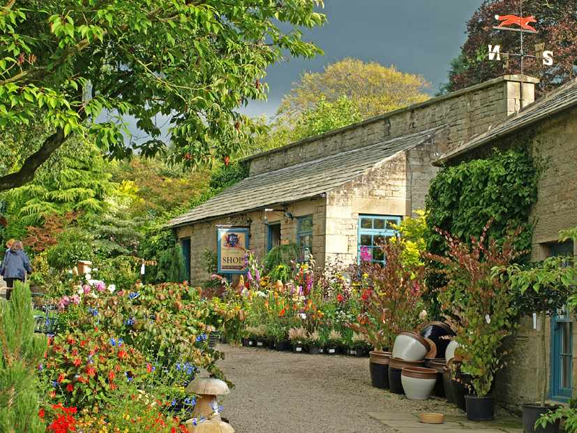 Eggleston Hall Nursery & Gardens