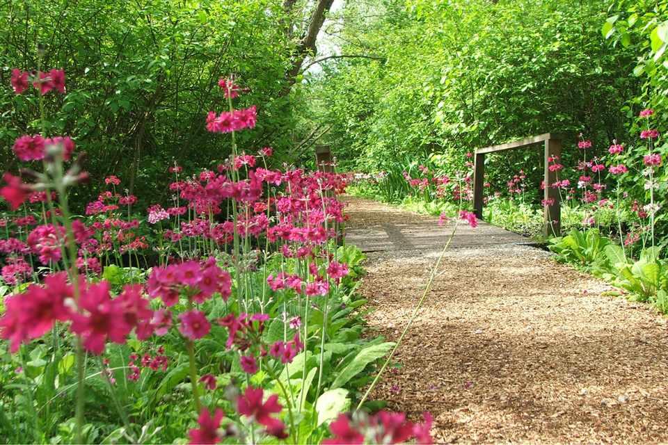 Fairhaven Woodland & Water Garden