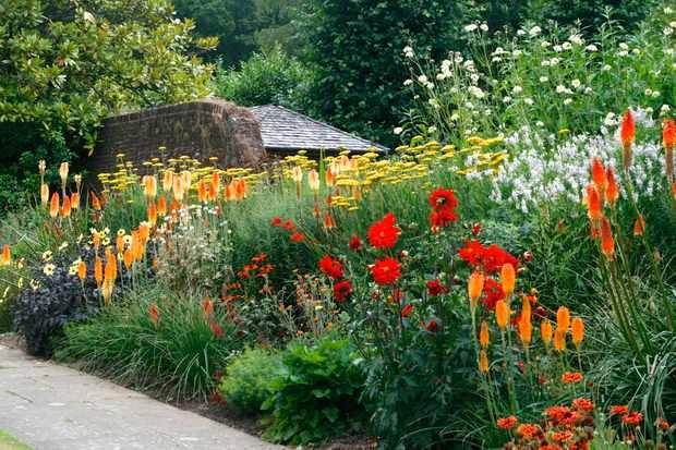 Great Comp Garden